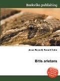 Bitis Arietans