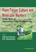 Plant Tissue Culture and Molecular Markers