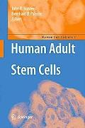 Human Adult Stem Cells