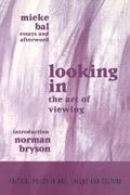 Looking in The Art of Viewing