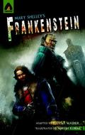 Frankenstein (Campfire Graphic Novels)