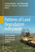 Patterns of Land Degradation in Drylands : Understanding Self-Organised Ecogeomorphic Systems