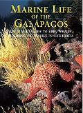 Marine Life of the Galapagos The Divers' Guide to the Fishes, Whales, Dolphins And Marine In...