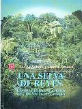 Selva De Reyes/ a Forest of Kings La Asombrosa Historia De Los Antiguos Mayas