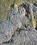Francisco de Goya 1746-1828