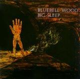 BLUEBELL WOOD(reissue)(paper-sleeve)(remastered)