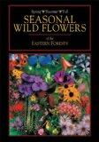 Seasonal Wild Flowers of the Eastern Forests